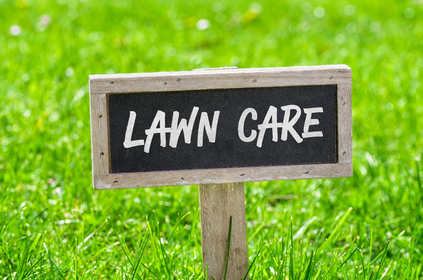 Lawn Care Services | Lawn Care Program | Hambleton Lawn ...