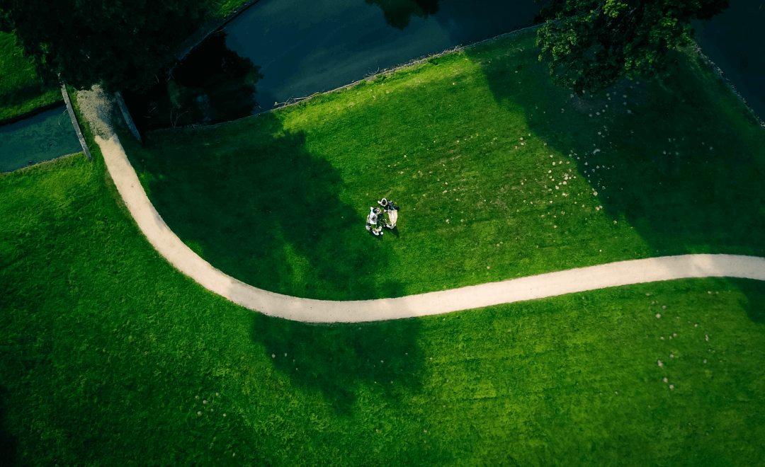 Best Time To Fertilize Lawn Before Or After Rain Archives